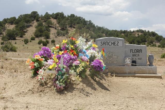 New Mexico 043