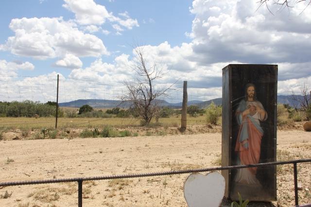 New Mexico 048