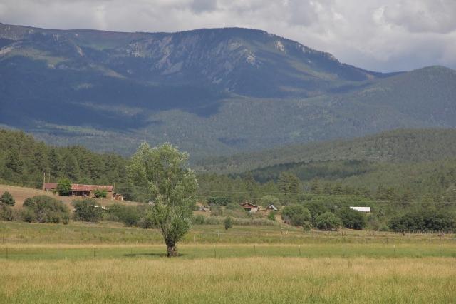 New Mexico 007