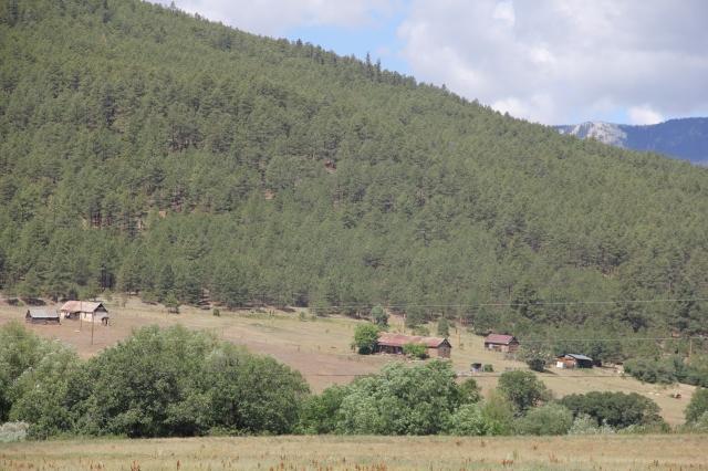 New Mexico 014