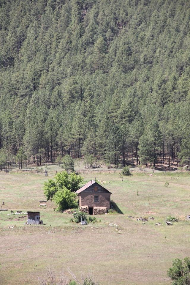 New Mexico 038